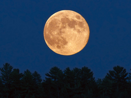 a-beaver-moon-is-coming-this-weekend--heres-what-that-actually-means