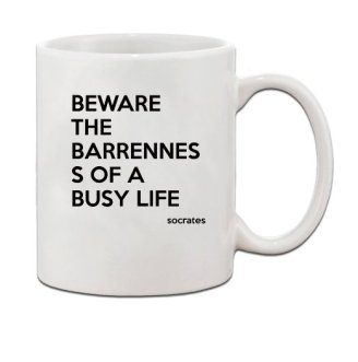 beware-the-barrenness-of-a-busy-life-socrates-quote-ceramic-coffee-tea-mug-cup-11-oz_22838423