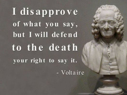defend-right-to-say-it-voltaire-daily-quotes-sayings-pictures