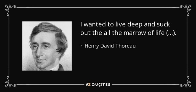 quote-i-wanted-to-live-deep-and-suck-out-the-all-the-marrow-of-life-henry-david-thoreau-40-92-91