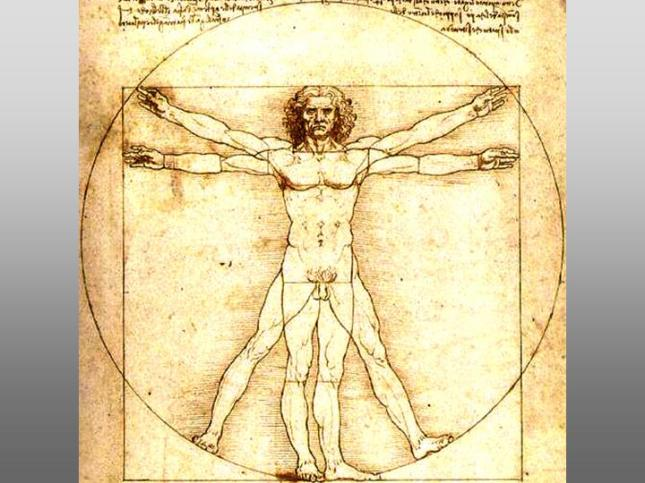 pillar8-thought-and-art-vitruvian-man-leonardo-da-vinci.jpg